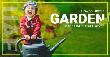 How to Have a Garden in the UAE's Arid Climate