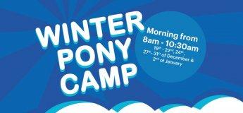 Winter Pony Camp 2017